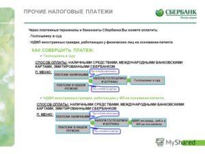 Как оплатить госпошлину за права - через онлайн сбербанк и терминал