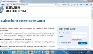 Как отправить налоговую декларацию через Госуслуги: инструкция по заполнению и работе с сайтом