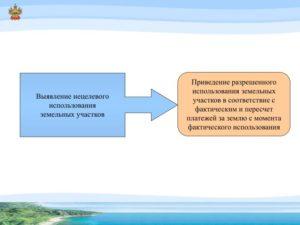 Ответственность за нецелевое использование земельного участка