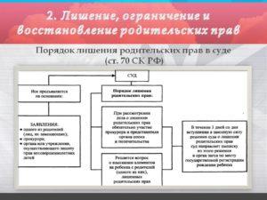Основания для лишения родительских прав, ограничения в правах. «Статус» ребенка на усыновление и опеку