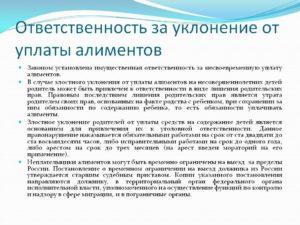 Административная ответственность за уклонение от уплаты алиментов