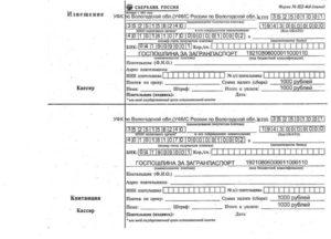 Госпошлина за загранпаспорт в 2018 году: ставка способы оплаты и срок действия