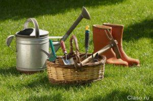 Новые правила для дачников и садоводов