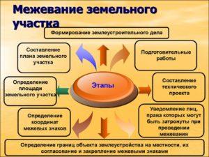 Как российское законодательство регулирует процесс межевания