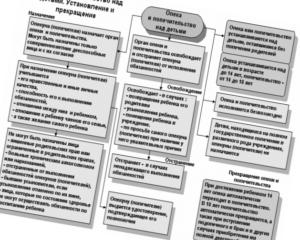 Установление и порядок установления опеки и попечительства: как стать опекуном