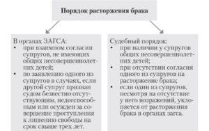 Пакет документов для развода в административном и судебном порядке, процессуальные требования