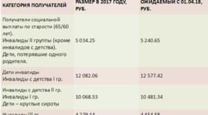 Размер социальной пенсии в 2018 году, установленный в России