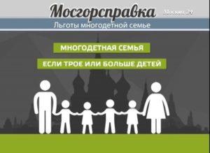 Какие налоговые льготы для многодетных семей в Москве