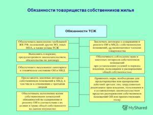Обязанности председателя ТСЖ и его функции