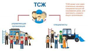 Что такое ТСЖ, преимущества и недостатки ТСЖ, этапы создания ТСЖ