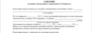 Заявление о признании должника физического лица банкротом: образец 2018 года