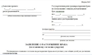 Написание заявления на развод через ЗАГС по образцу